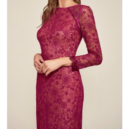 Lace Embroidered Dress With Sheer Sleeves