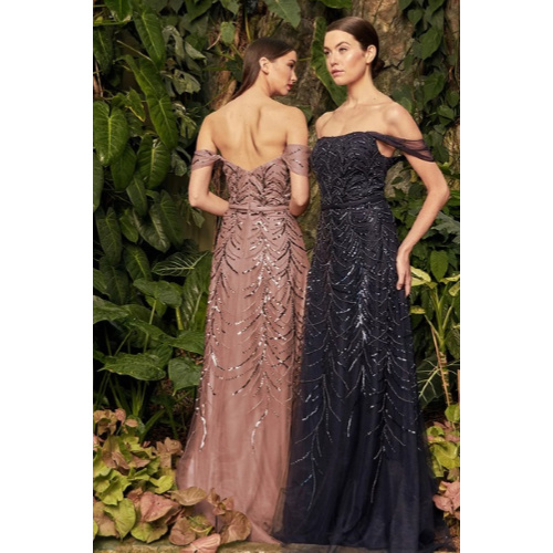 Daymor Beaded A-line Formal Gown
