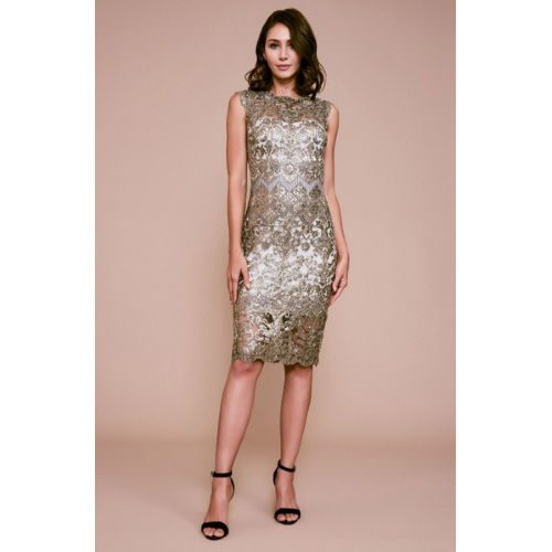 Tadashi Delta Sleeveless Sequin Embroidered Dress